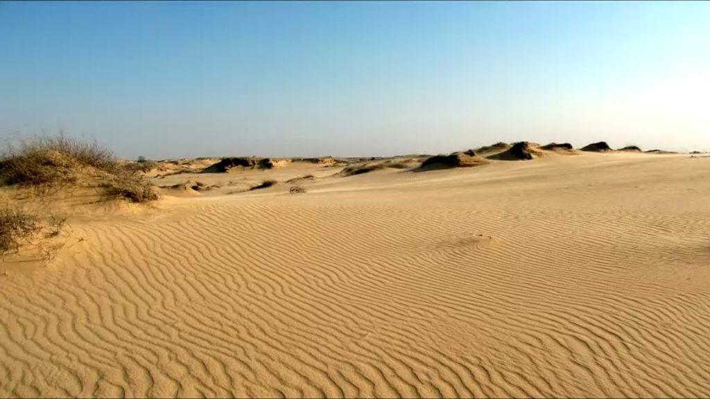 українська пустеля